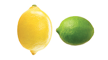 Lemon Lime Agency